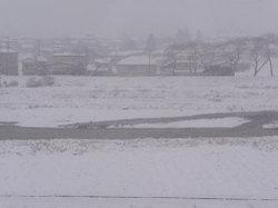 Snow2_2
