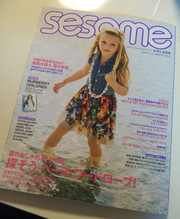 Sesame1